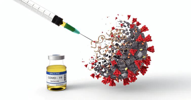 covid19 vaccine vaccination